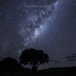 超広角レンズSAMYANG 14mm f/2.8の星景撮影テストでTawharanui Regional Parkへ