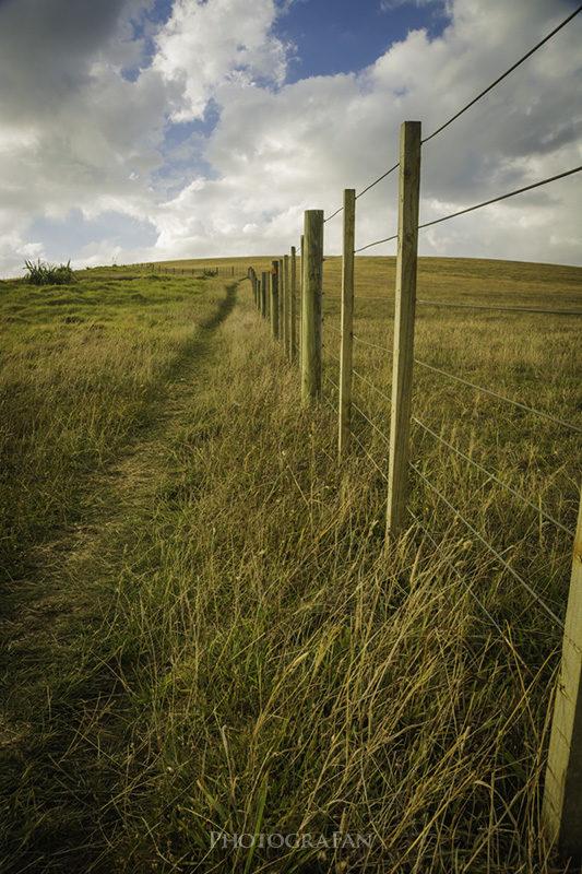 Te Henga Walkwayの坂