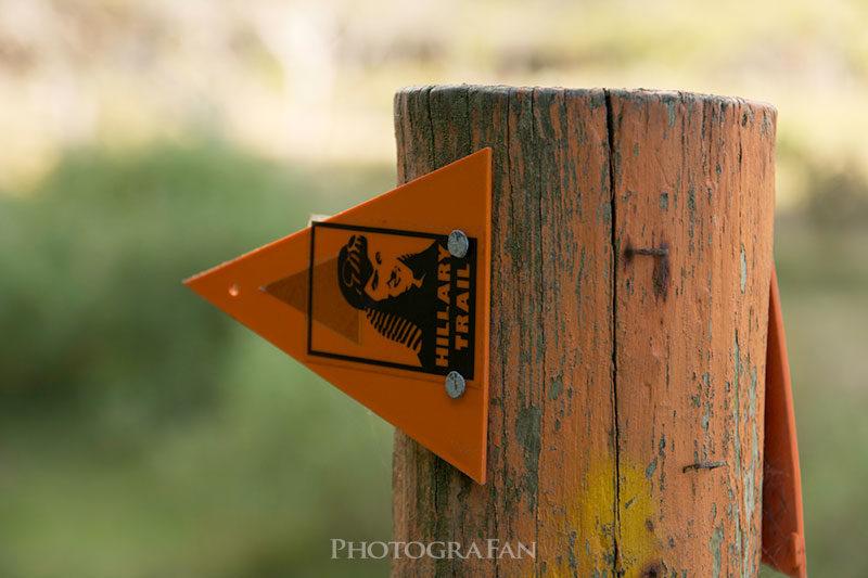 ニュージーランドのトレッキングコースの目印