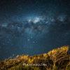 ニュージーランドの星空はテカポだけじゃない!オークランドの天の川も負けてない!
