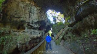 ニュージーランドの絶景 Mangapohue Natural Bridge 自然が創った巨大な橋