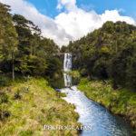 オークランドの滝「4大瀑布」巡りでマイナスイオンを浴びに行こう!
