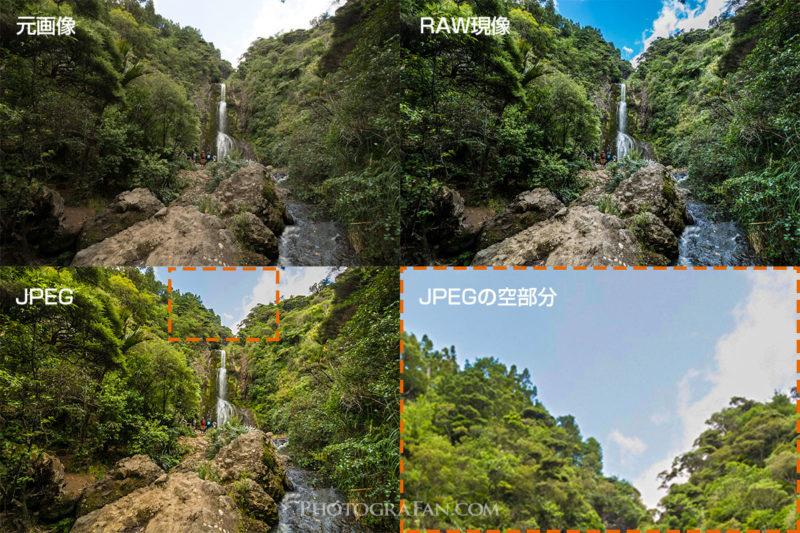 白飛び画像のRAWとJPEG比較