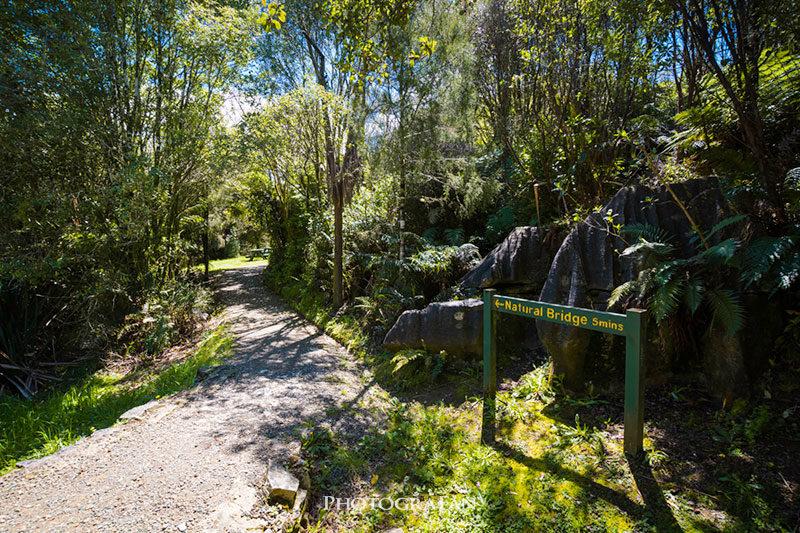 Mangapohue Natural Bridgeへのトレッキングコース入口