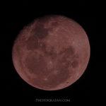 皆既月食で幻想的な月を撮影する方法!ベストな時間帯やコツは?