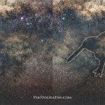 ニュージーランドの星空に姿を現す鳥『Galactic Kiwi銀河のキーウィ』を激写