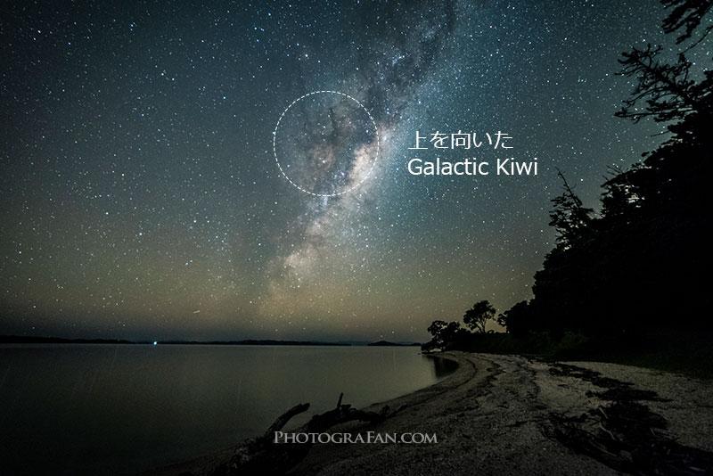 上を向いたGalactic Kiwi