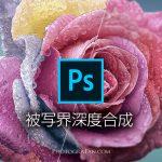 Photoshopで被写界深度合成して全部にピントが合った写真に仕上げる方法