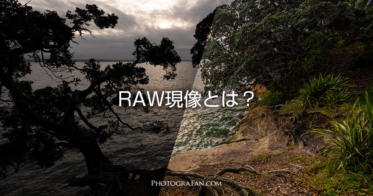 RAW現像とは?