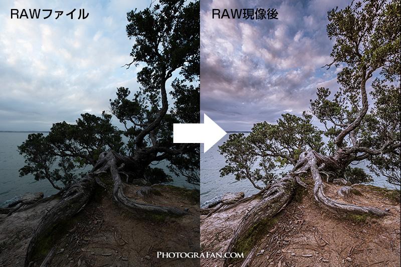 RAW現像の例