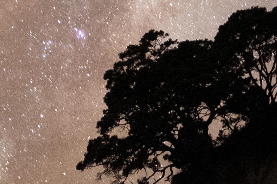 星空と近景:PureRAW適用前